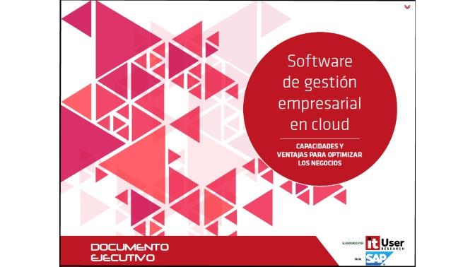 WP_software_gestionEmpresarial_2